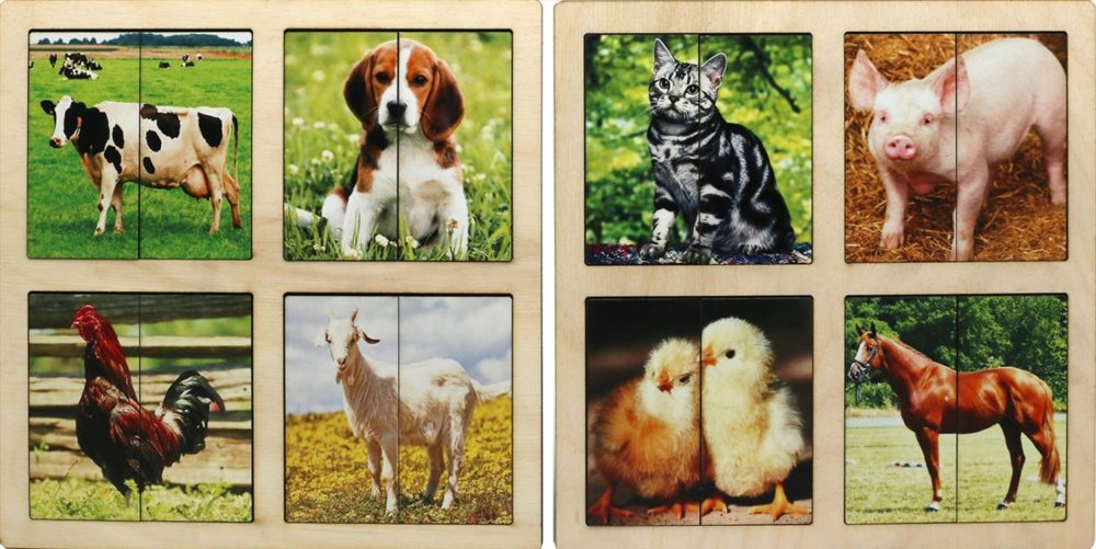Карточки домашние животные для детей