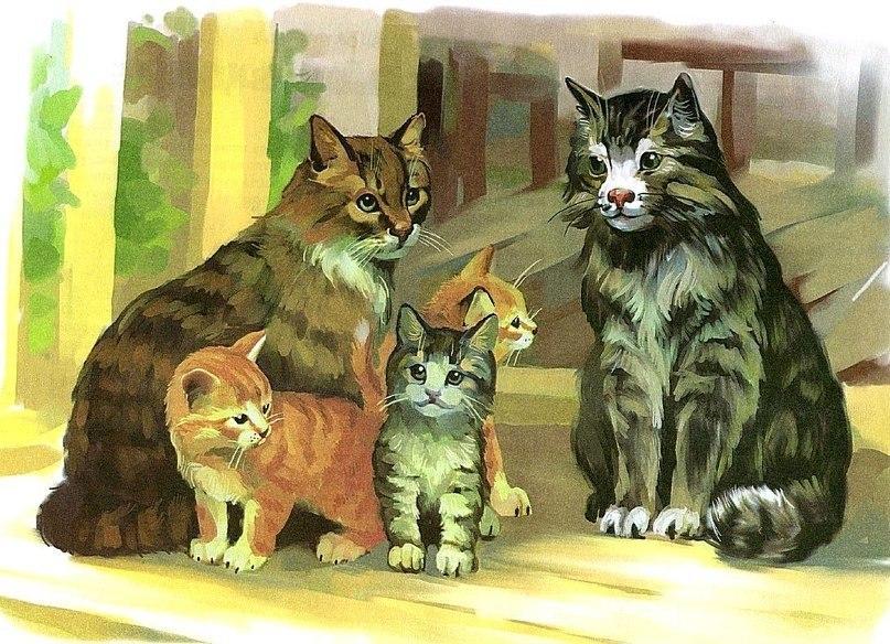 Кошачья семья