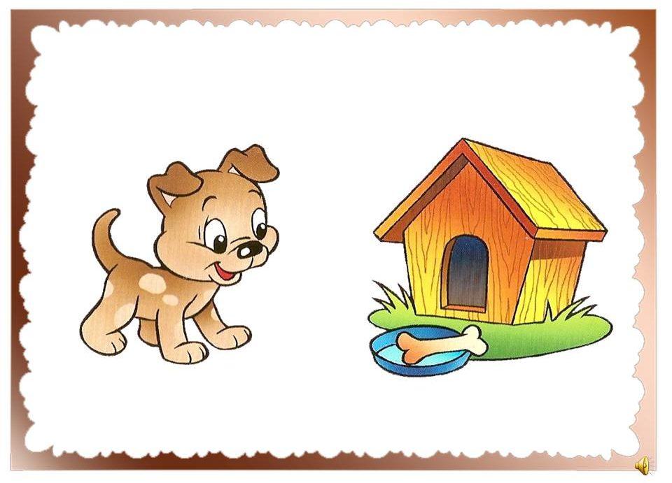 Собака живет в будке