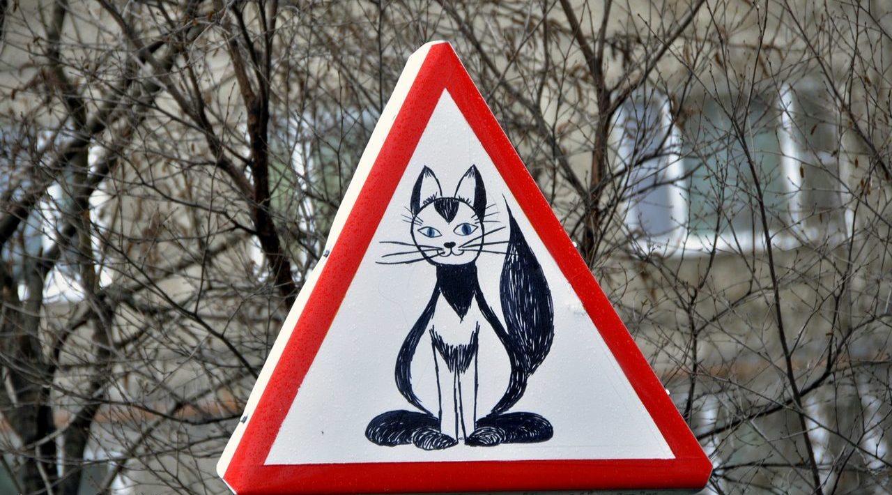 бабка придумать дорожный знак картинки моя
