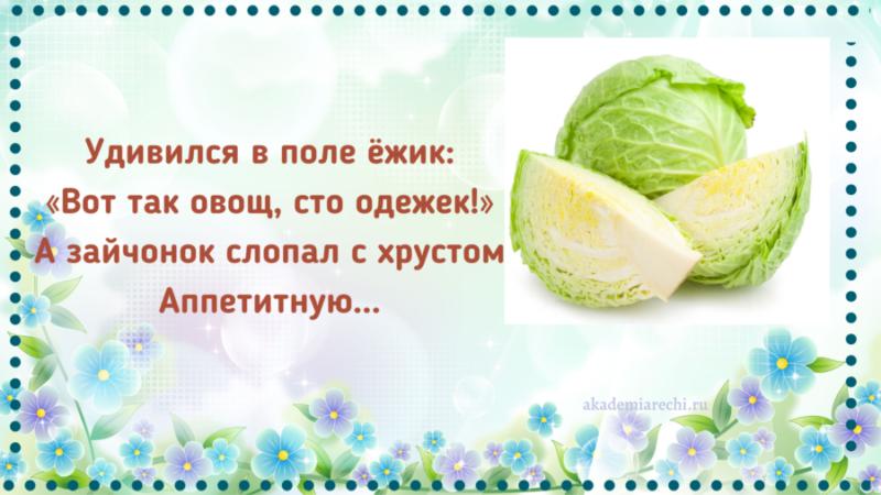 Загадка про капусту