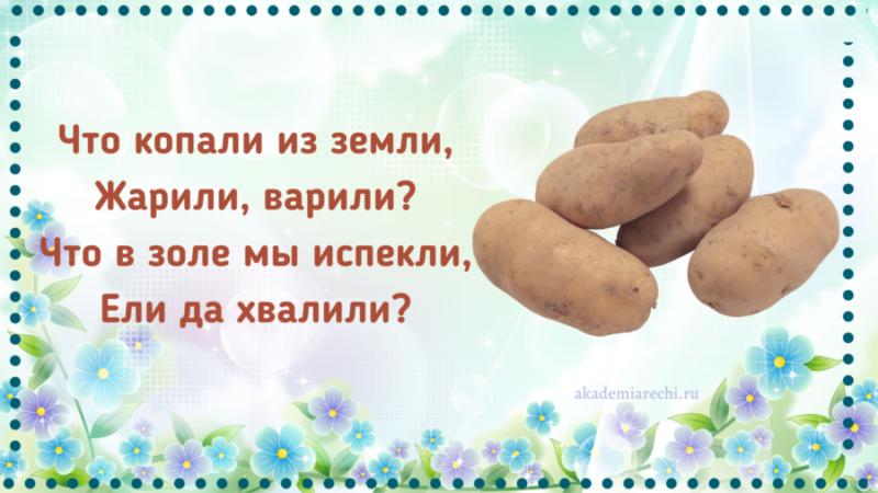 Загадка про картофель