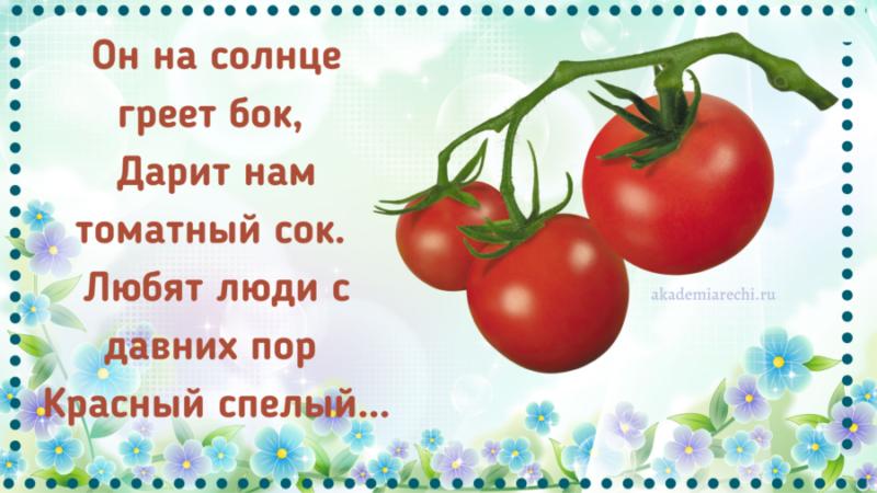 Загадка про помидор