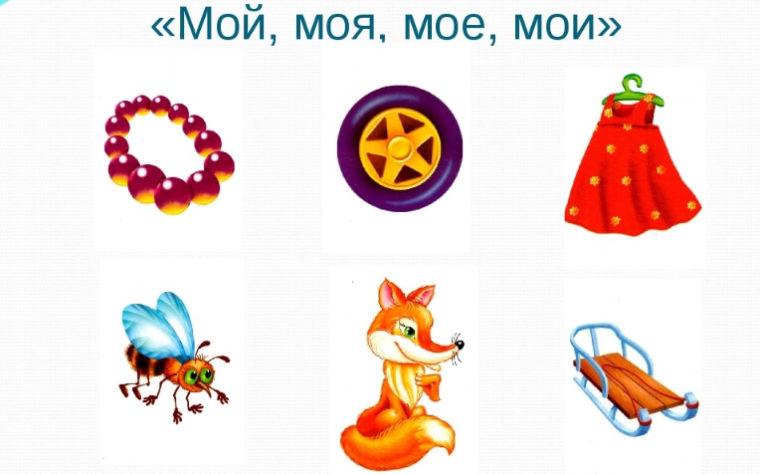 Дидактическая игра «Мой, моя, мое, мои»