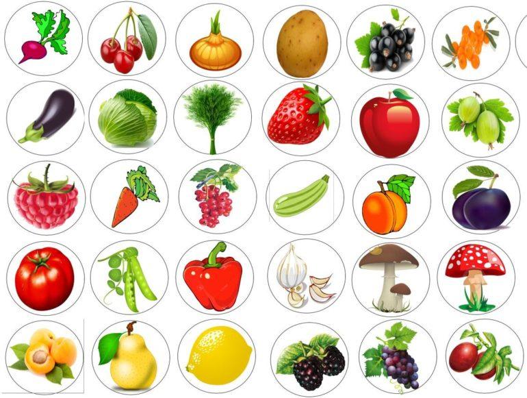 Дидактическая игра «Овощи и фрукты»
