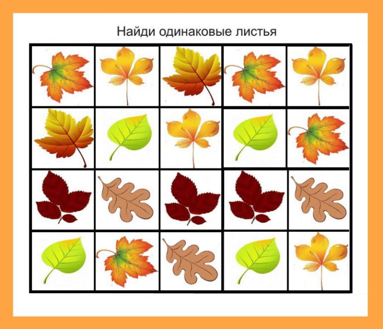 Дидактическая игра «Найди одинаковые листья»