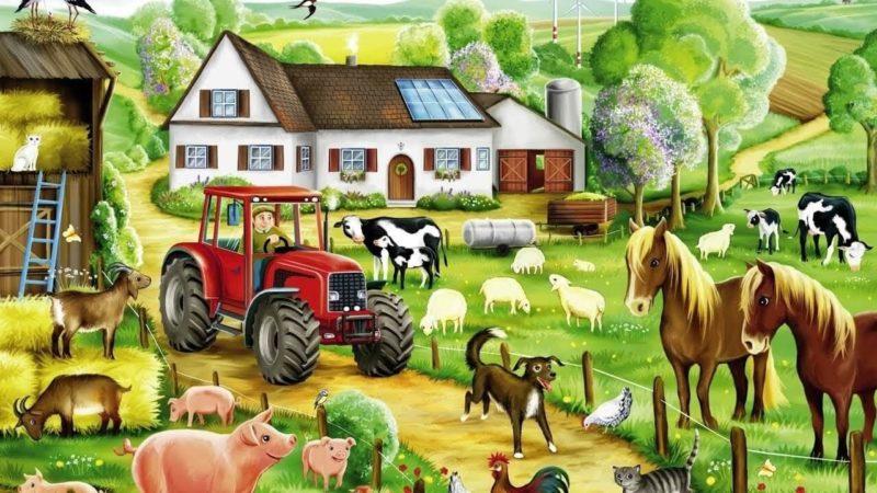 «Домашние животные» – лучшие образовательные игры для детей