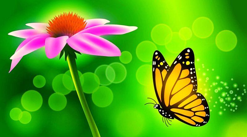 Игра «Бабочки» для детей дошкольного возраста